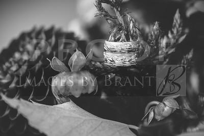 yelm_wedding_photographer_long_013_D75_7880-2