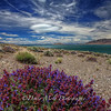 Follow the Clouds, Pyramid Lake, Nevada