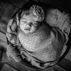 Kendall Newborn Session