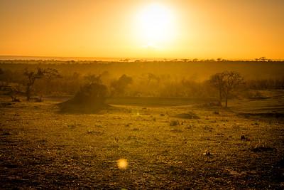 Sunrise on safari