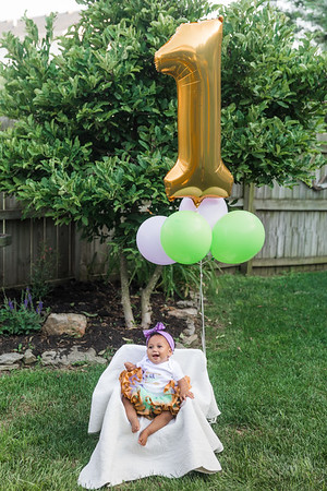 Leighton's First Birthday & Smash Cake Photography