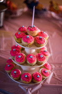 Leila's 13th Birthday Party-0005