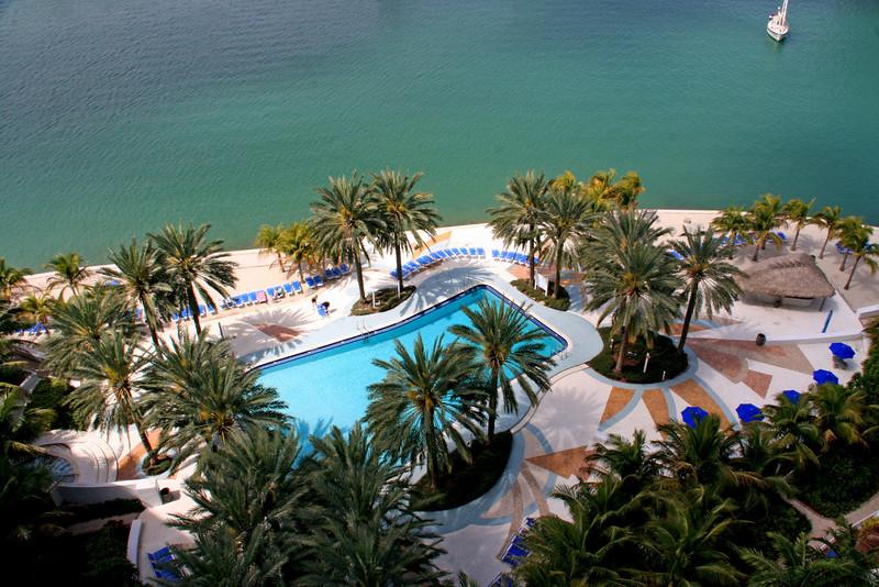 The flamingo- South Beach