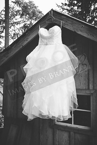 yelm_wedding_photographer_linville_013_DS8_2480-2