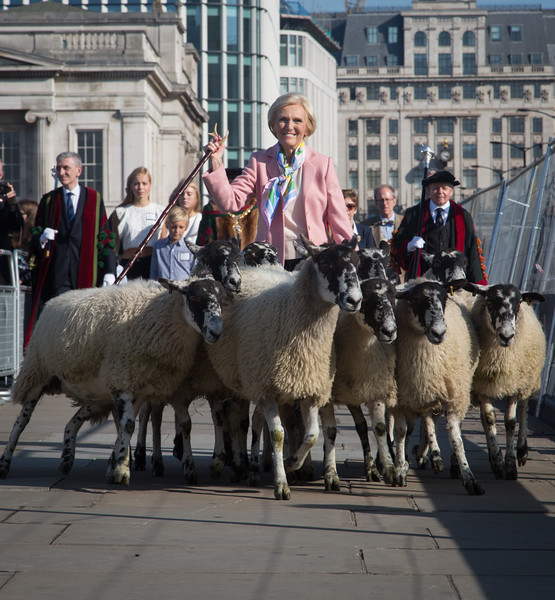 Mary Berry leads London Bridge sheep drive