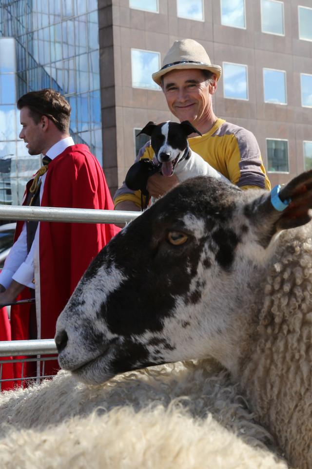 Mark Rylance and dog at London Bridge Sheep Drive