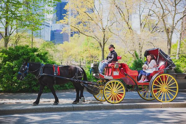 Lynn & David - Central Park Elopement-17