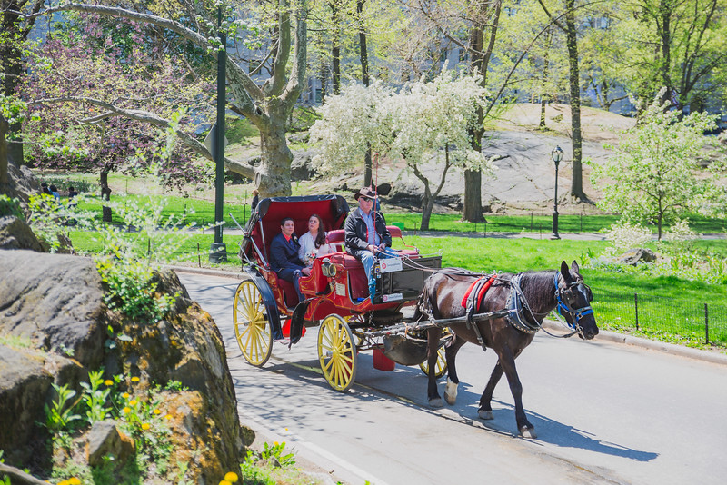 Lynn & David - Central Park Elopement-10