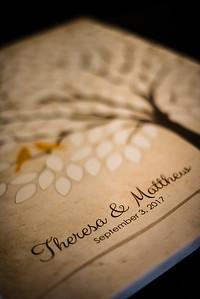 Matt & Theresa's Wedding-0011