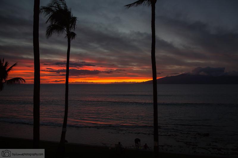 Maui-1