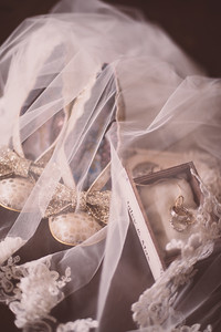 Max & Haley's Wedding-0009