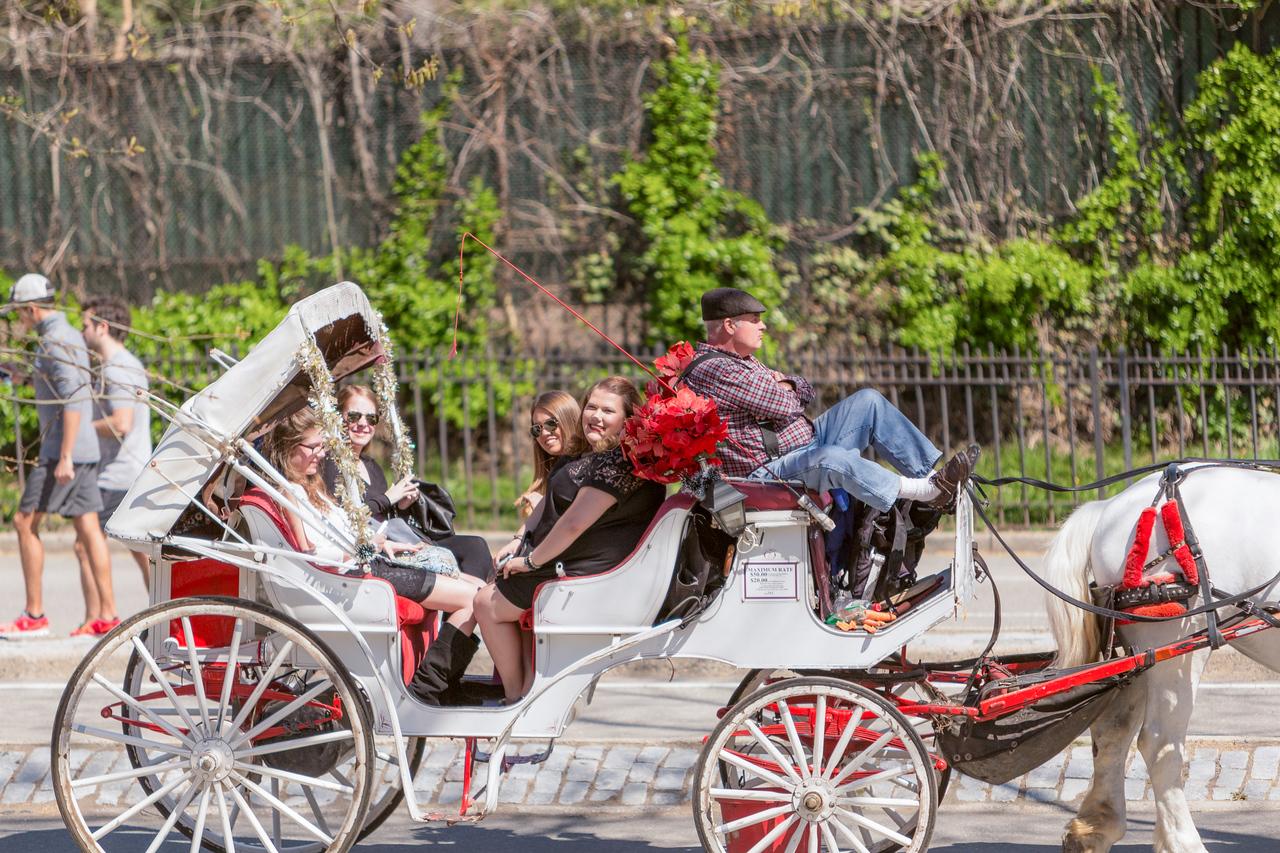 Melinda and Brian - Central Park Wedding-117