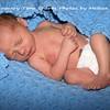 baby garrett 113_petagged