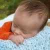 sleeping prince1_pe