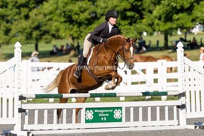 Montco 4H Region 1 Horse and Pony Show