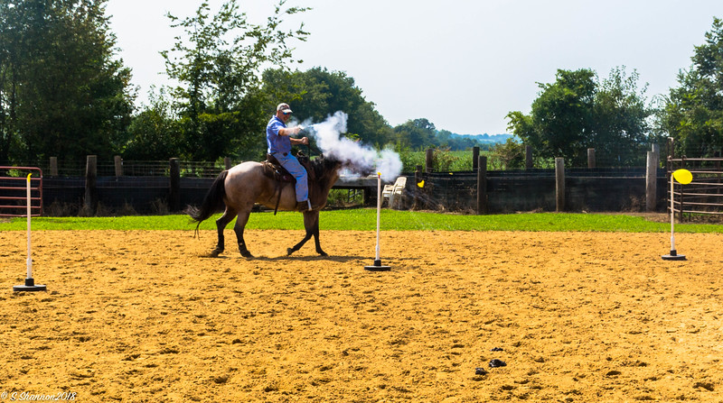 Mounted shooting-3244