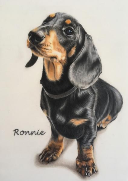 ronnie-1