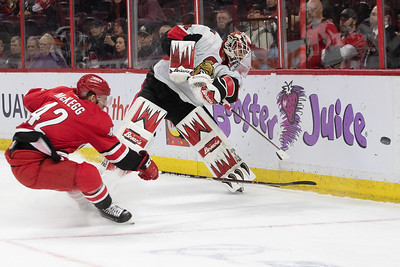 NHL 2019: Hurricanes vs Senators  FEB 12