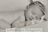 King newborn-4349