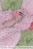 King newborn-4360