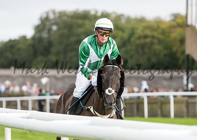 Newmarket July Racecourse Newmarket Town Plate. Picture by Mark Westley