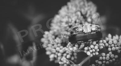 yelm_wedding_photographer_coughlin_005_D75_1152-2