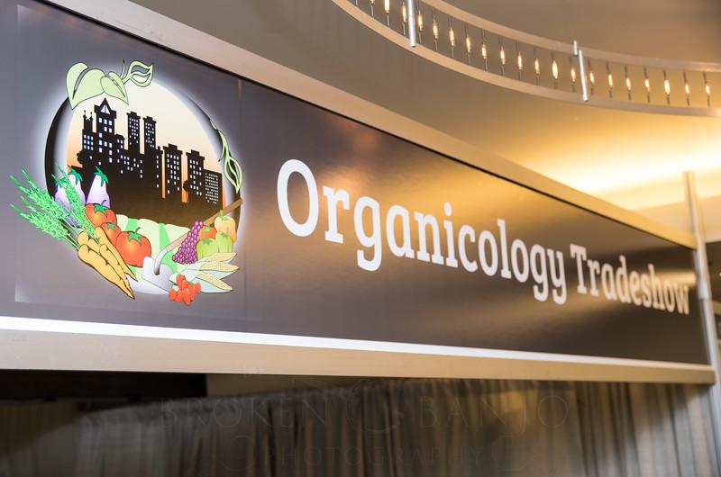 Organicology-2015-BrokenBanjo-207