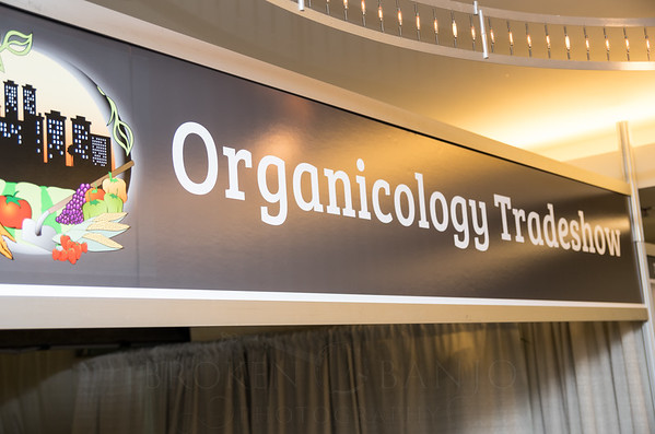 Organicology-2015-BrokenBanjo-206