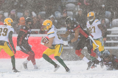 CFL 2016: Eskimos vs Redblacks  NOV 20