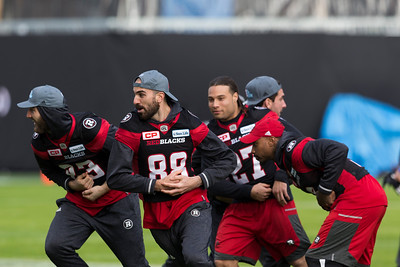 CFL 2016: Grey Cup Game, Stampeders vs Redblacks  NOV 27