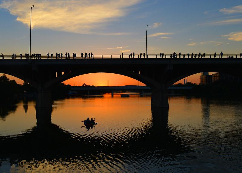 Congress Bridge bat watchers