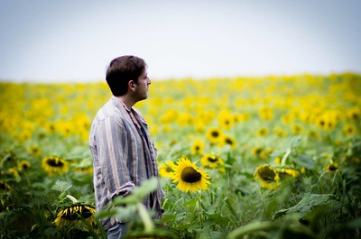 Mattituck Sunflowers