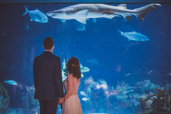 Patrick & Bridget's Wedding-10