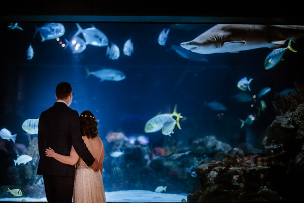 Patrick & Bridget's Wedding-11
