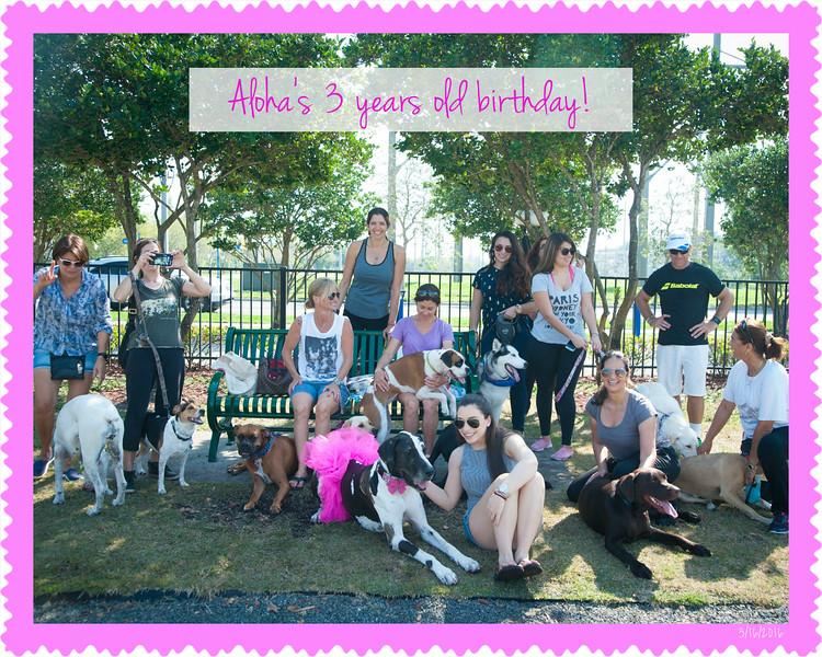 002 Aloha's Birthday!