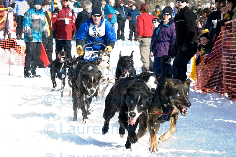 Doug Butler and team at the start of the Eleven Mile race; this race allows for an unlimited number of dogs on the team.