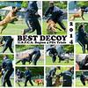 Best Decoy collage final