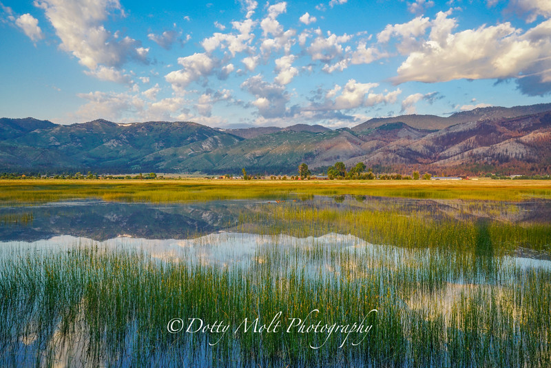 Washoe Valley Morning Reflections