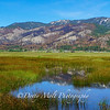 Washoe Valley Morning Reflections 2