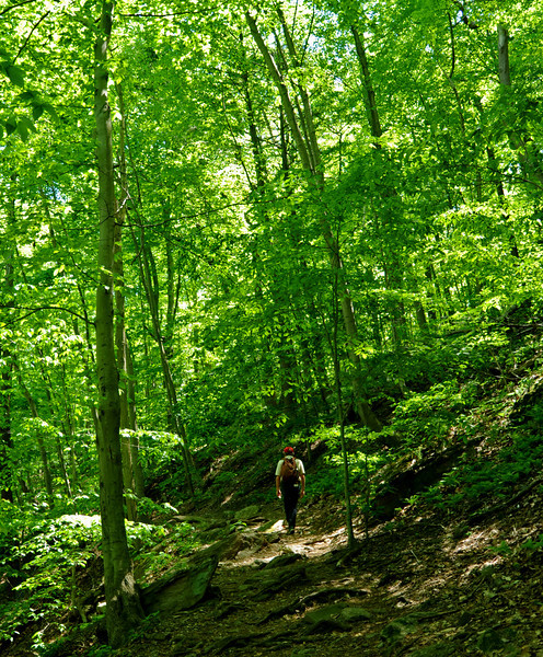 Hiking near Walnut Lane<br /> Wissahickon<br /> Philadelphia<br /> 7 May 2010