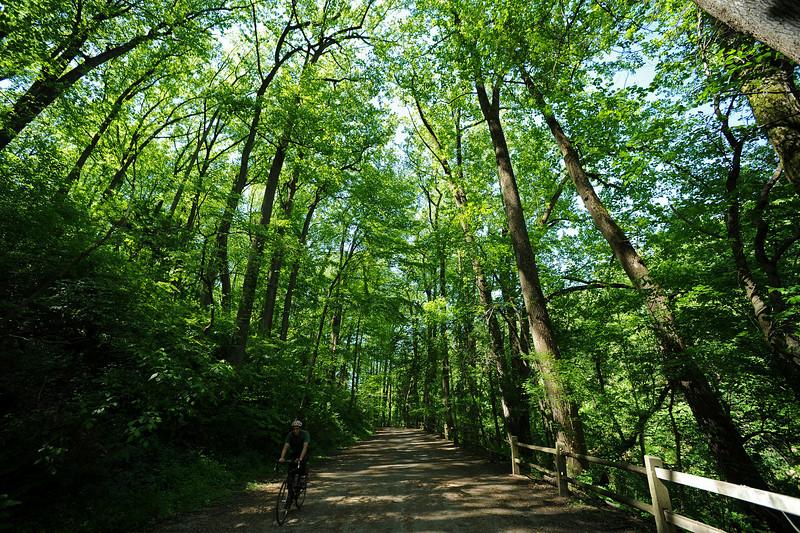 Forbidden Road<br /> Wissahickon<br /> Philadelphia<br /> 7 May 2010