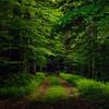 20120530_3381-Edit