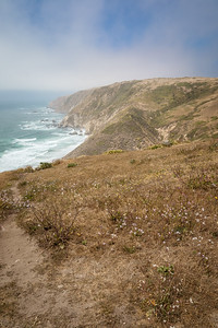 DAISY_COBY_2018_POINT_REYES_SPRING_0075