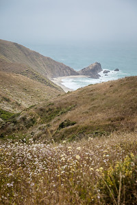 DAISY_COBY_2018_POINT_REYES_SPRING_0062