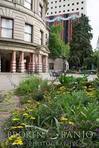 PDX City Hall -008