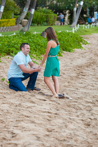 20141211_Conklin_Proposal-46