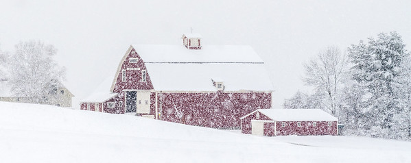Snowstorm and Red Barn