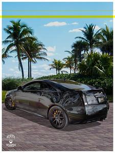 Black_Caddy_left_rear_eye_beach
