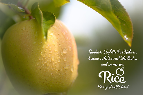 Rice Fruit Company Ads