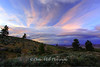 Five Tree Sunset, Timberline Road, NV
